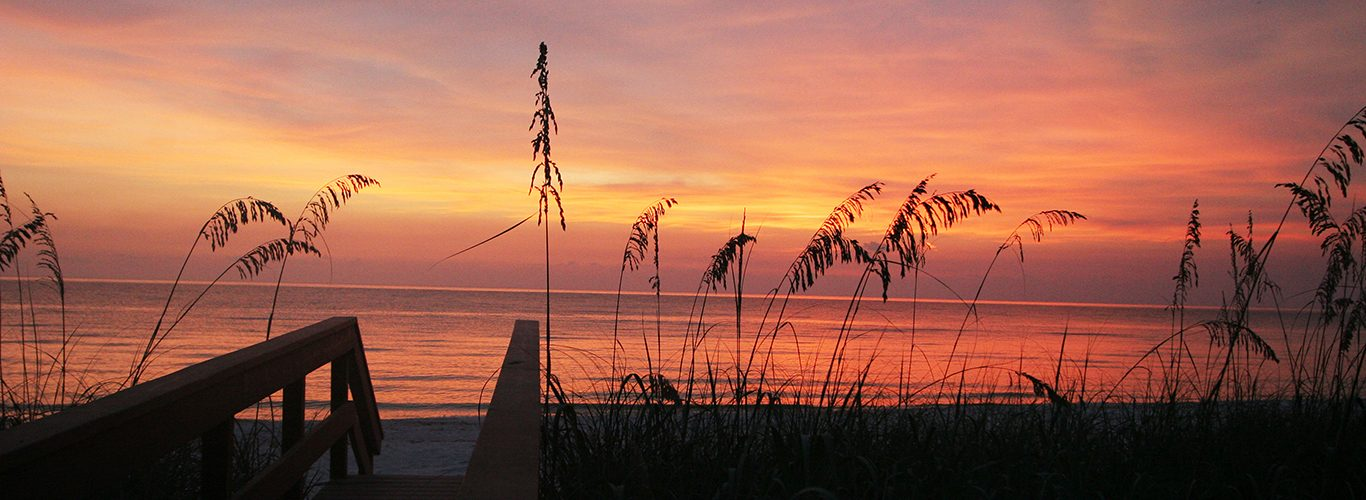 Park Shore Sunset at the Beach